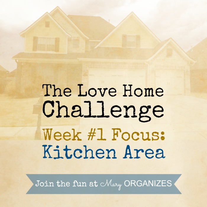 Week 1 - Kitchen Area -- of The Love Your Home Challenge