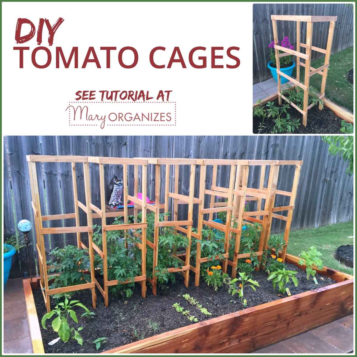 Diy Tomato Cage Tutorial Garden Tips Creatingmaryshome Com