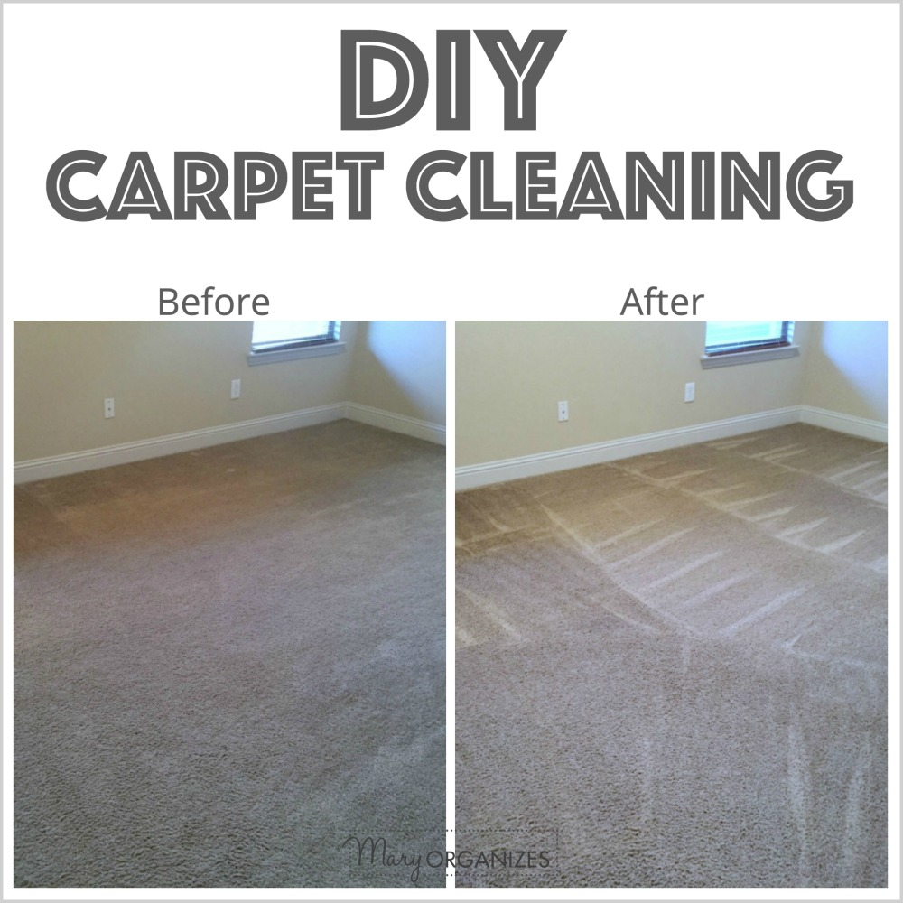 DIY Carpet Cleaning - creatingmaryshome.com